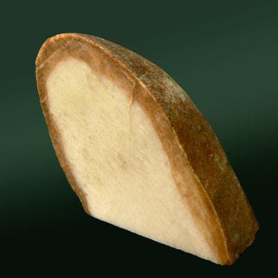 фотография минерала Кварцит