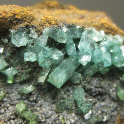 фотография минерала Купроадамин