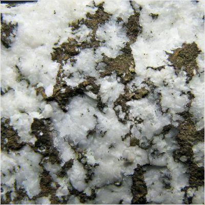 фотография минерала Альгодонит