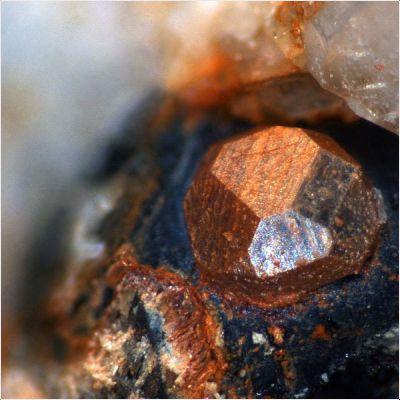 фотография минерала Дэлиит