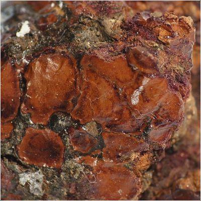 фотография минерала Дельвоксит