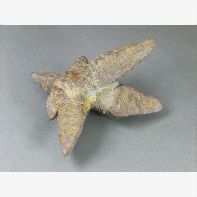 фотография минерала Глендонит 2