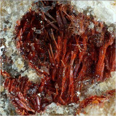 фотография минерала Монтроидит