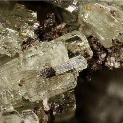 фотография минерала Диктомссенит