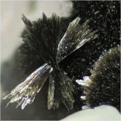 фотография минерала Джулголдит-(Fe2+)