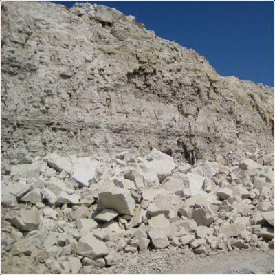 фотография минерала Известняк