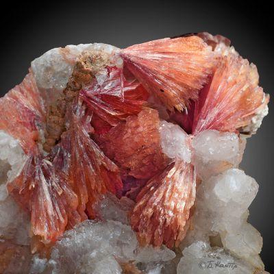 фотография минерала Инезит