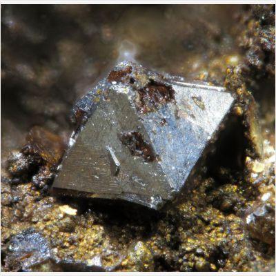 фотография минерала Полидимит