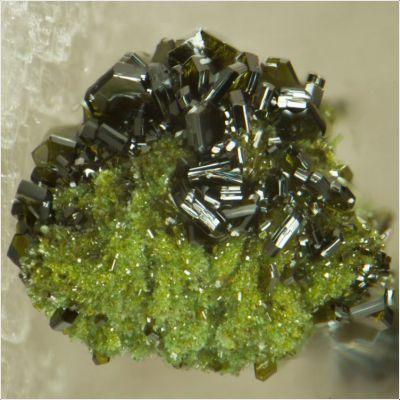 фотография минерала Везиньеит