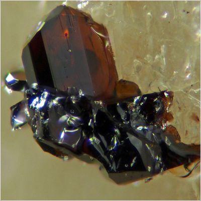 фотография минерала Перрьерит-(Ce)