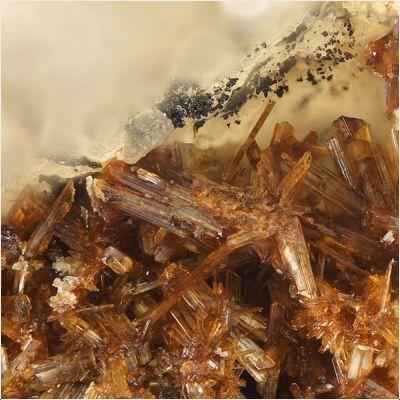 фотография минерала Метасвитцерит