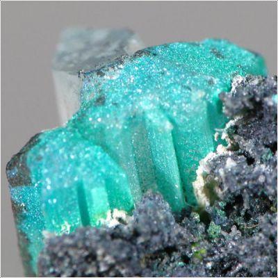 фотография минерала Познякит