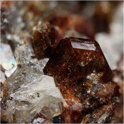 фотография минерала Крыжановскит