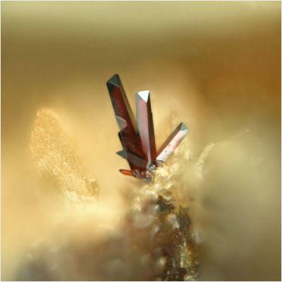 фотография минерала Пиробелонит