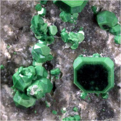 фотография минерала Метаторбернит