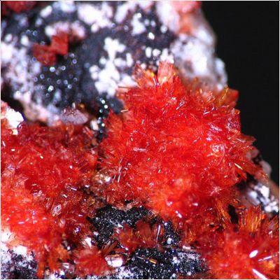 фотография минерала Монтгомериит