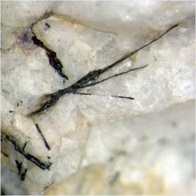 фотография минерала Корагоит