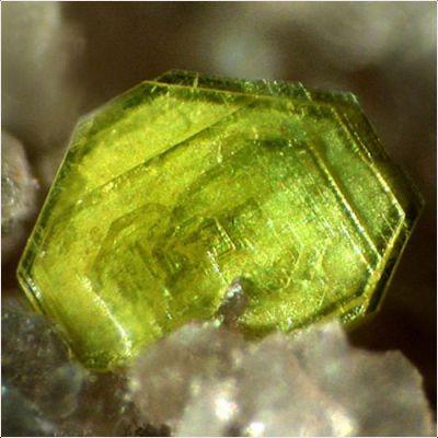 фотография минерала Тюямунит