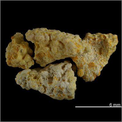 фотография минерала Авогадрит