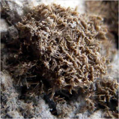 фотография минерала Псевдокотуннит
