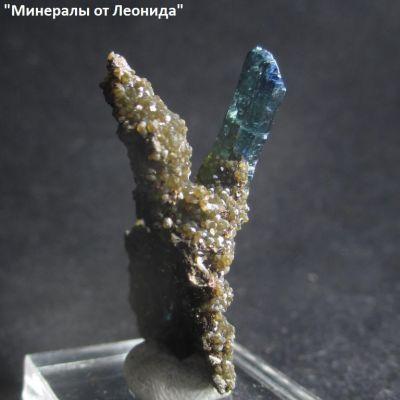 фотография Мелкие кристаллы Лудламита, кристалл Вивианита на породе