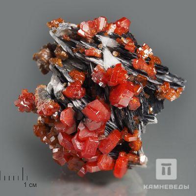 фотография Коллекционный образец ванадинита