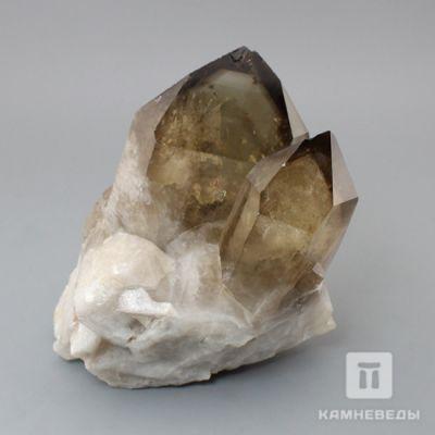 фотография Сросток кристаллов раухтопаза