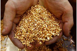 В следующем году «Роснедра»  выставит на торги сорок семь месторождений золота