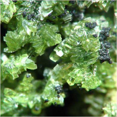 фотография минерала Таворит