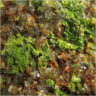 фотография минерала Тангеит