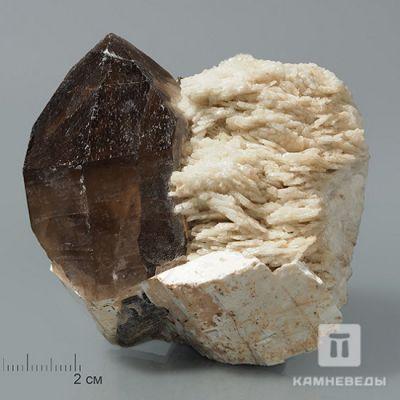 фотография Кристалл раухтопаза  на микроклине с клевеландитом