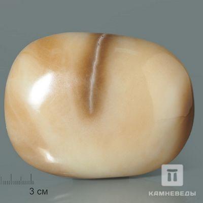 фотография Полированная галька нефрита