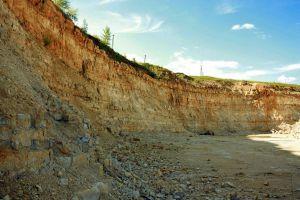Загрязнение почв: параметры безопасности и виды исследований