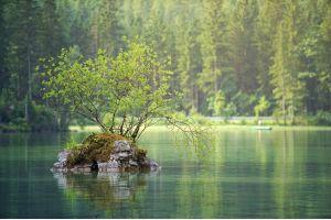 Мероприятий, направленных на сохранение уникальных водных объектов, станет больше